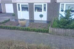onderhoudsvriendelijke_tuin-20