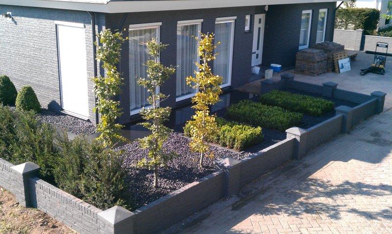 Strakke tuin bij een modern huis den bogert hoveniers